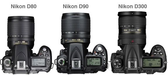nikon 2 digital camera reviews  Nikon D80 vs D90 vs D300