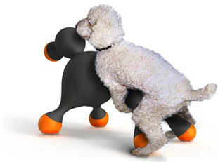 pet gadget best of spot cool stuff  The Worlds Worst Dog <br>Gadgets & Products
